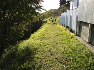Potrero Path