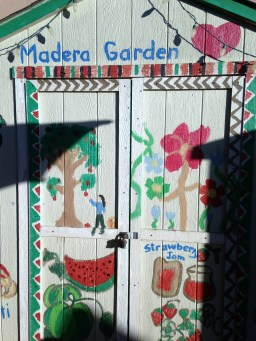 madera garden-3